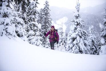Austria, Altenmarkt-Zauchensee, young woman with dog on ski tour in winter forest - HHF05535