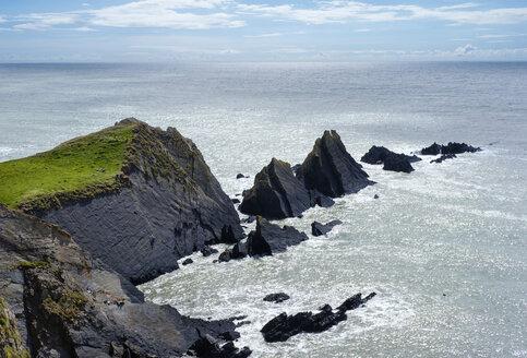 Great Britain, England, Devon, Hartland, Hartland Quay, Rocky coast, Screda Point - SIEF07619