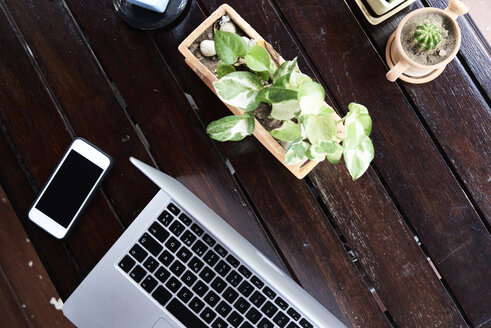 Overhead view of cell phone and laptop on wooden table with plants - IGGF00209