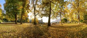 Germany, Baden-Wuerttemberg, Heidelberg, palace garden in autumn - PUF00943