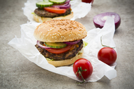 Homemade burger, tomato, red onion, salad and cucumber - LVF06437