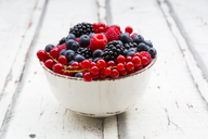 Wild berries in bowl - LVF06446