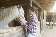 Smiling woman caring for a horse on a farm - SHKF00803