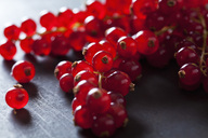 Red currants, close-up - CSF28557