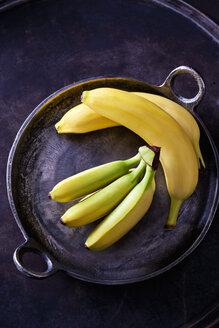 Various bananas - CSF28560