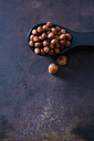 Spoon of cracked hazelnuts - CSF28572