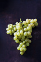 Green grapes on dark metal - CSF28578