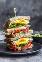 Sandwich with egg, salad, cucumber, tomate, salmon, avocado and onion - SARF03434