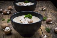 Creme of mushroom soup - LVF06458