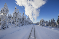 Germany, Saxony-Anhalt, Harz National Park, Brocken, rail tracks of Harz Narrow Gauge Railway in winter, cloud of steam - PVCF01185