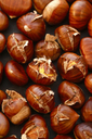 Rosted chestnuts, close-up - JTF00860