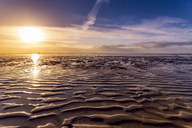 Great Britain, Scotland, Solway Firth, mud flats, sunrise - SMAF00882