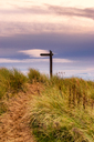 Great Britain, Scotland, Solway Firth, sign post, sunset - SMAF00888