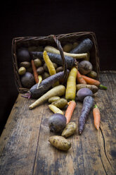 Winter vegetables, carrot, beetroot, potato and parsnip - LVF06478