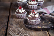 Black forest cherry muffins with cream topping and cherry - SBDF03405