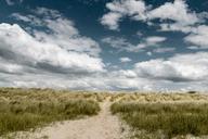 France, Upper Normandy, Avranches, near Genets, dune, walkway - DWIF00889