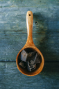 Wooden spoon with dark chocolate pieces on wood - KIJF01789