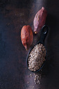Spoon of crushed raw cacao nibs and  cacao pods on rusty metal - CSF28625