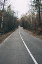 Russia, Blagoveshchensk, autumn landscape with road - VPIF00303