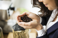 Businesswoman holding coffee beans in her hands, close-up - MOEF00464