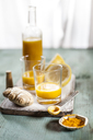 Detox drink, ginger, lemon and orange juice with curcuma and chilli powder - SBDF03420