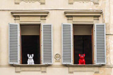 Italy, Tuscany, Florence, funny window decoration, dog figurines with sunglasses - CST01534