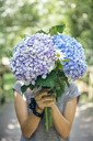 Unrecognizable young woman hiding behind a bouquet of hydrangeas - DAPF00861