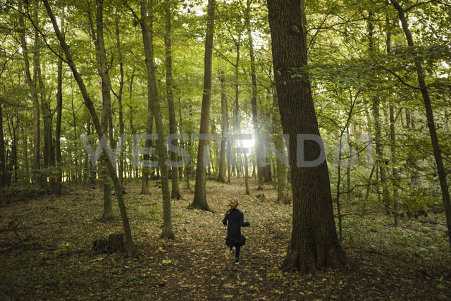 Rear view of girl running in a forest - MOEF00571 - Robijn Page/Westend61