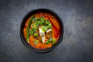 Bowl of red Thai Curry with snow peas, carrots, bell pepper, spring onions and smoked tofu - LVF06529