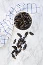Fresh raw blue mussels - LVF06555