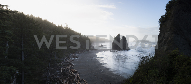 USA, Washington State, Olympic National Park, Seastack at Rialto beach - STCF00367