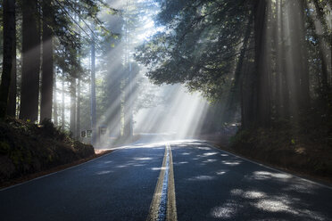 USA, California, Highway 1, sunbeams - STCF00385