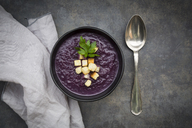Bowl of red cabbage soup garnished with croutons - LVF06568