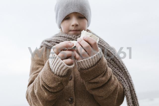 Boy's hands holding cuttlebone on the beach in winter - KMKF00103