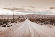 USA, California, Joshua Tree, a dirt street through the desert of Joshua Tree - WVF00857