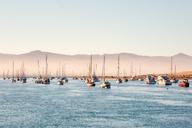 USA, California, Morro Bay, port of Morro Bay, sailing boats - WVF00863