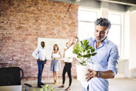 Businessman watering plant in office with colleagues in background - HAPF02581