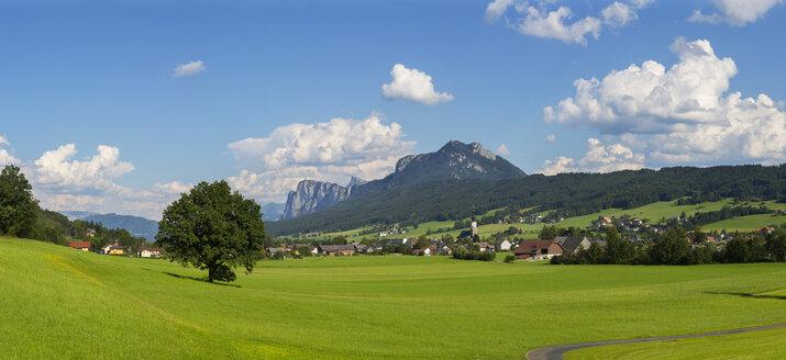 Austria, Salzburg State, Flachgau, Thalgau, Drachenwand and Schober - WWF04038