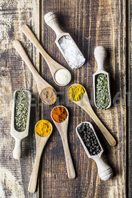 Spicies, curry, chilli, cinnamon, curcuma, garlic, parsley, oregano, salt and pepper on wooden spoons - SARF03462
