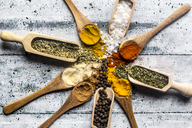 Spicies, curry, chilli, cinnamon, curcuma, garlic, parsley, oregano, salt and pepper on wooden spoons - SARF03465