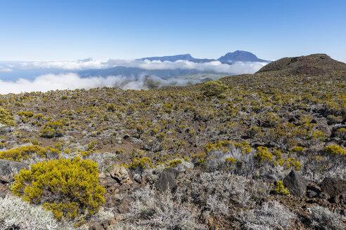 Reunion, Reunion National Park, Piton de la Fournaise, Route du volcan, Plaine des Remparts and Piton des Neiges - FOF09626