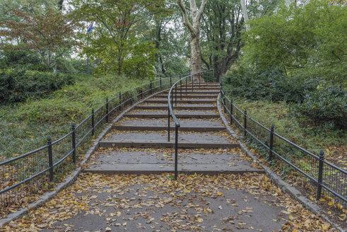 USA, New York City, Manhattan, Central Park - RPSF00135