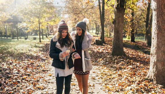 Two women with cell phone walking in autumnal forest - MGOF03701