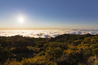 Reunion, Reunion National Park, Maido viewpoint, View from volcano Maido to sea of clouds and sunset - FOF09673