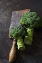 Broccoli and rusty cleaver - CSF28665
