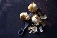 Smoked garlic on rusty ground - CSF28680