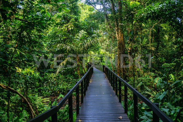 Costa Rica, Limon, Wooden pathway in Cahuita National Park - KIJF01863