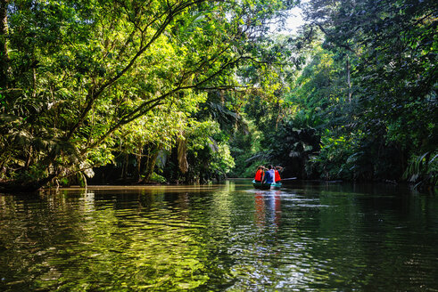 Costa Rica, Tortuguero, Tourists canoeing through the mangroves of Tortuguero - KIJF01881
