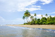 Costa Rica, Beach landscape with palm trees - KIJF01887