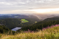 Germany, Baden-Wurttemberg, Black Forest, View from Feldberg mountain at sunrise - WDF04260
